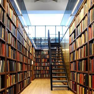 Библиотеки Устинова